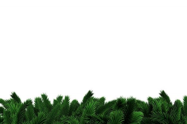 Branches d'arbre de sapin générées numériquement