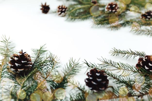 Branches d'arbres de noël avec des cônes en fond blanc. photo de haute qualité