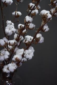 Branches de coton naturel dans un vase en verre sur un fond sombre, noël