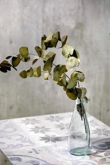 Branches d'eucalyptus feuilles rondes en bouteille en verre debout sur une table en céramique ornée