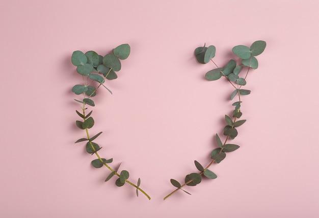 Branches d'eucalyptus sur fond rose