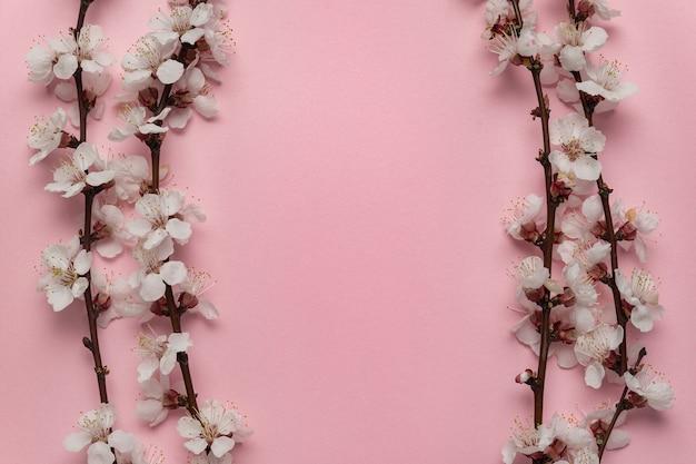 Branches fleuries de printemps sur fond rose dans le cadre. modèle. toile de fond. copiez l'espace.