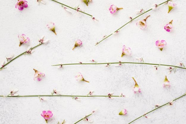 Branches de fleurs sur table