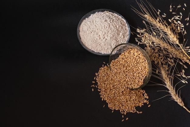 Branches, grains et farine de blé secs