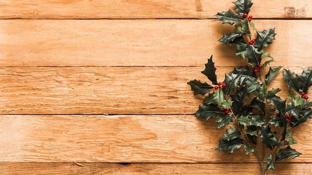 Branches de houx vert sur table en bois