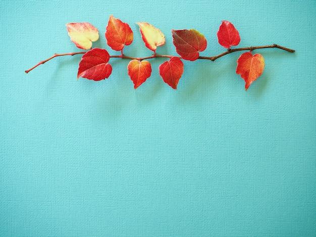 Branches de lierre avec des feuilles rouges sur fond bleu fond d'automne lumineux