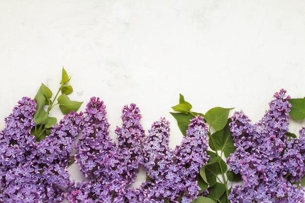 Branches lilas sur une surface de pierre claire. concept de printemps. mise à plat, vue de dessus