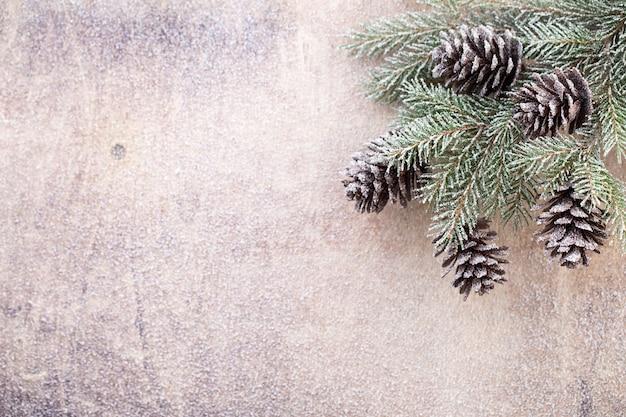 Branches de noël. symbole de noël.