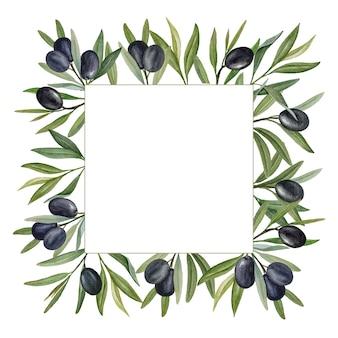 Branches d'olivier avec cadre carré aquarelle olives noires.