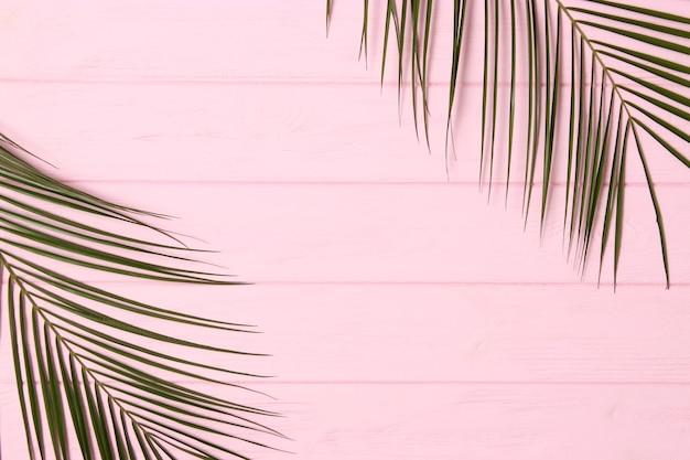 Branches de palmier sur une vue de dessus de fond coloré avec place pour le texte