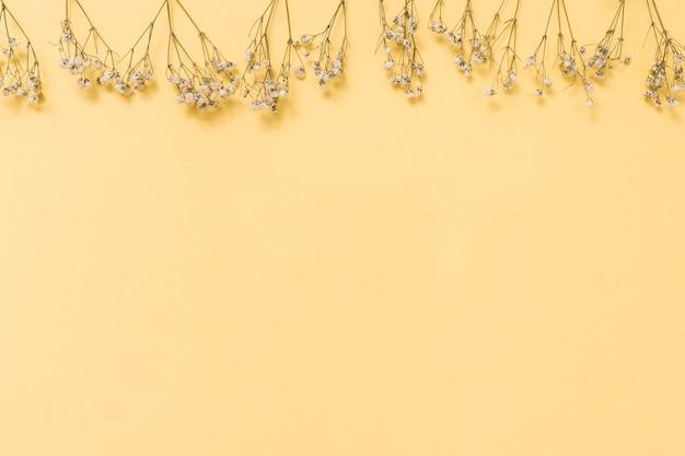 Branches de petites fleurs dispersées sur une table jaune