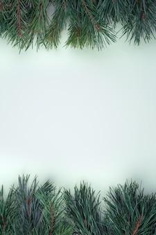 Branches de pin placées en haut et en bas sur une surface grise
