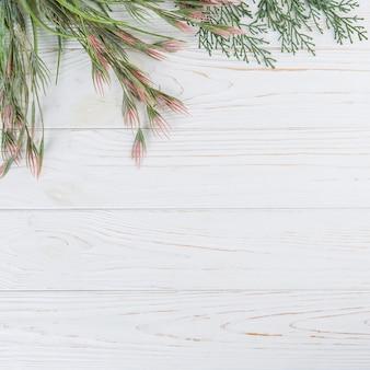 Branches de plantes vertes sur une table en bois