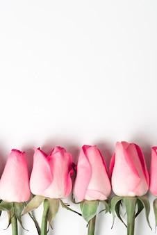Branches de roses roses sur table blanche