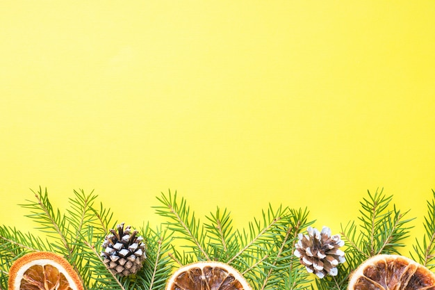 Branches de sapin et oranges cannelle sur jaune