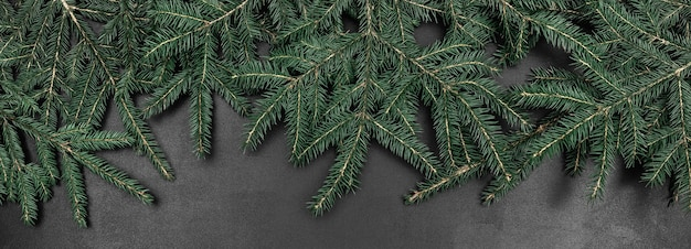 Branches de sapin vert comme cadre sur un fond de tableau noir. bannière abstraite avec espace copie