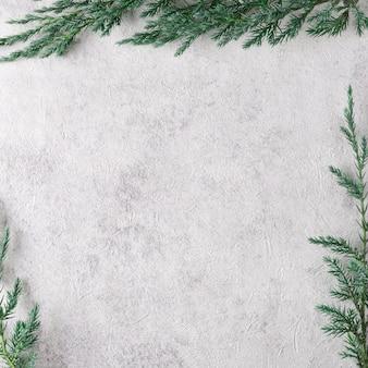 Branches de sapin vert encadrant un fond clair sous du béton