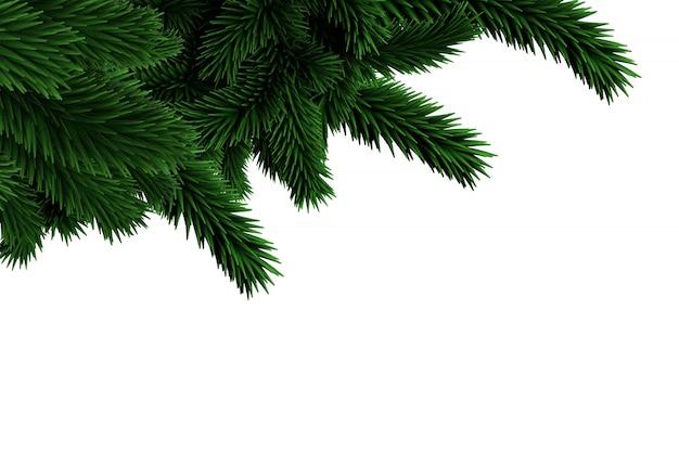 Branches de sapins générées numériquement