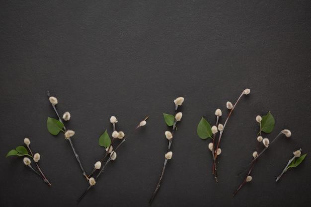Les branches de saule sont un symbole de la pâques chrétienne.