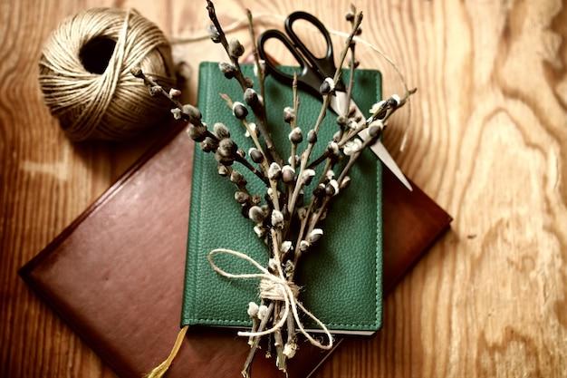 Branches de saule toniques sur le livre