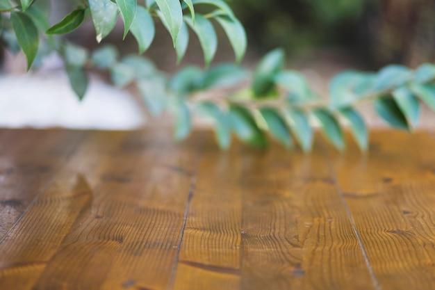 Branches sur table de bois