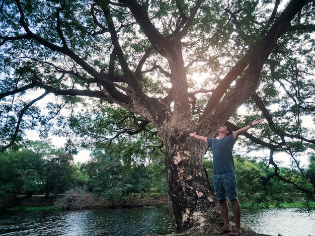 Les bras de l'homme asiatique de liberté ont soulevé heureux l'air frais avec le grand arbre et la nature verte.