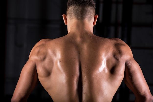 Brawny bodybuilder guy back