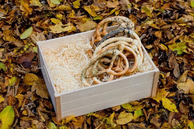 Bretzels assortis frais dans une boîte en bois sur fond de feuillage jaune d'automne.