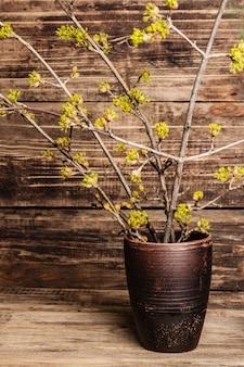 Brindilles en fleurs de cornouiller dans un vase en céramique sur une planche de bois vintage