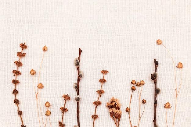 Des brindilles séchées et des fleurs séchées se trouvent sur une toile blanche
