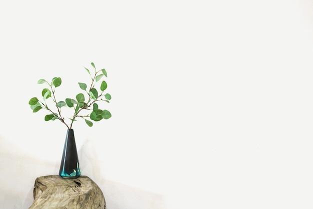 Brindilles sèches dans un vase sur une table en bois avec fond blanc.