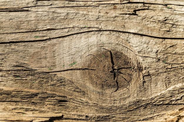 Brique de bois fissurée