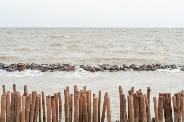 Brise-lames perche de bambou et à la protection de la côte en pierre sur la plage de la forêt de mangrove bangkuntien, côté mer thaïlande