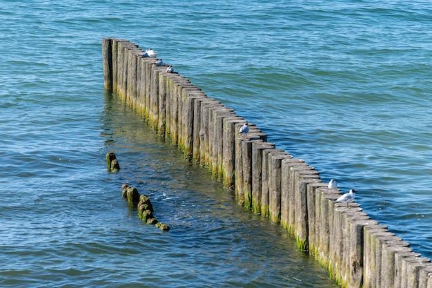 Brise-lames sur la plage