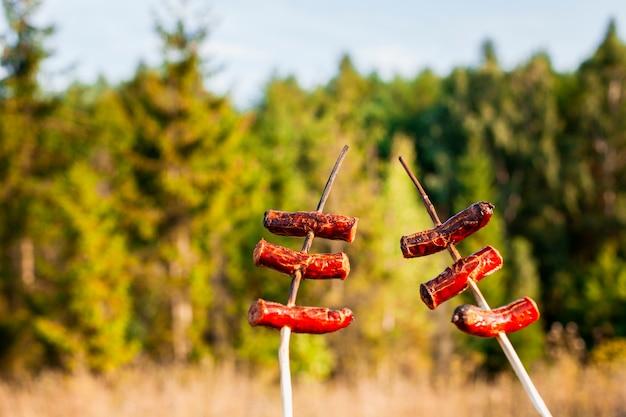Brochettes de saucisses et forêt floue en arrière-plan