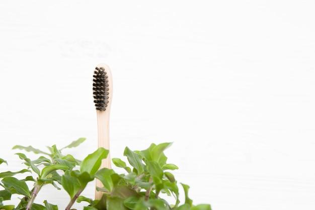 Brosse à dents en bambou dans les feuilles, concept écologique, espace copie