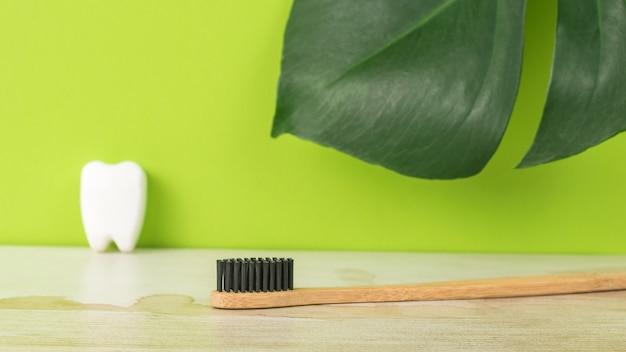 Une brosse à dents en bois et une figurine de dent sur le fond d'une grande feuille verte.