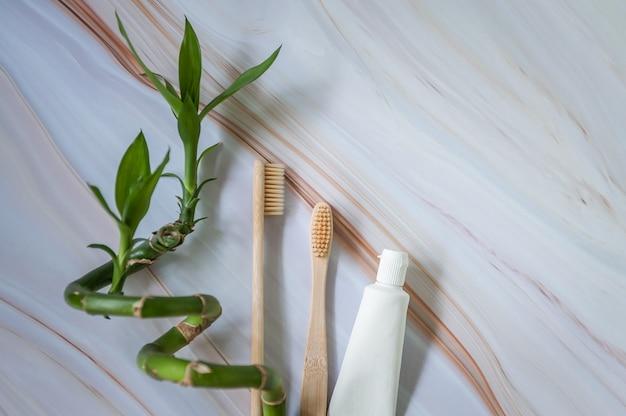 Brosses à dents écologiques avec dentifrice naturel et branche de bambou.