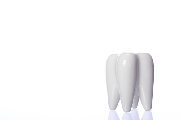 Brosses à dents familiales dans un support en forme de dent en céramique
