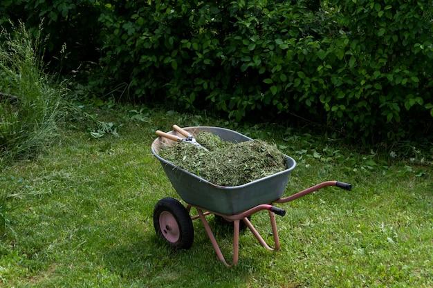 Brouette avec de l'herbe et des feuilles