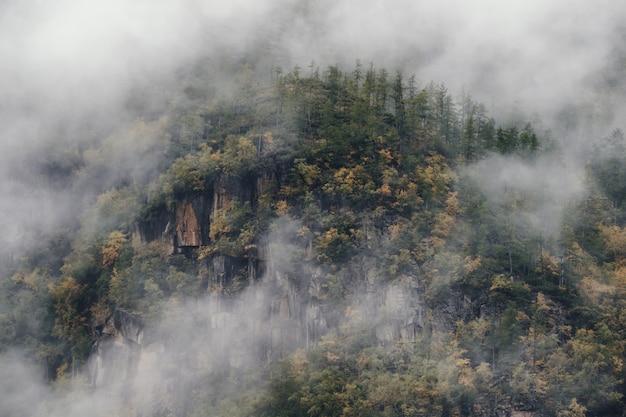 Brouillard sur la colline de la montagne, paysage magnifique à la fin de l'automne