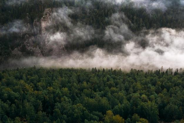 Brouillard dans les montagnes au lever du soleil. brouillard matinal dans les montagnes à l'aube. nuages dans les montagnes. brouillard matinal après la pluie. montagnes à l'aube. rivières de lait. espace de copie