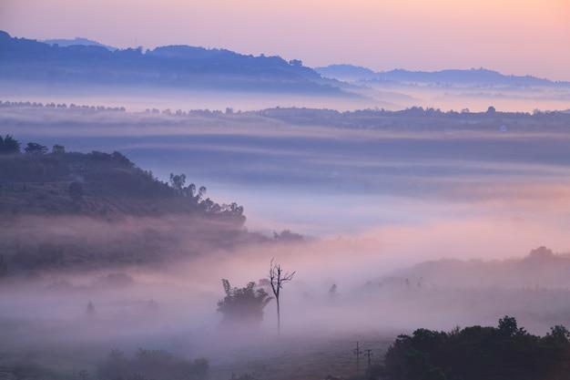 Brouillard dans le point de vue de khao takhian ngo à khao-kho phetchabun, thaïlande