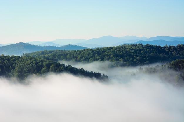 Brouillard du matin dans les montagnes