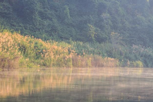 Le brouillard du matin sur le lac