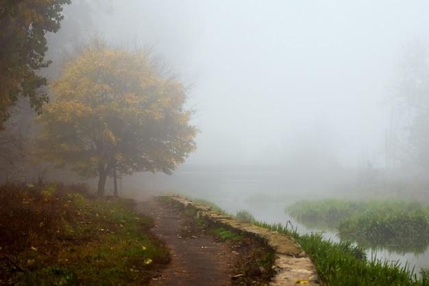 Brouillard épais dans le parc d'automne, passerelle dans le parc