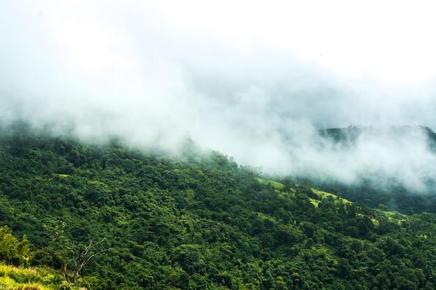 Brouillard et montagnes qui prennent soin de la saison des personnes seules, le jour du festival.