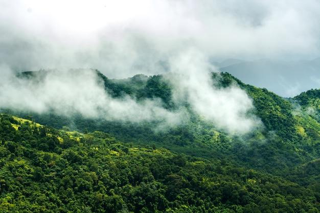 Brouillard et montagnes qui prennent soin de la saison des personnes seules