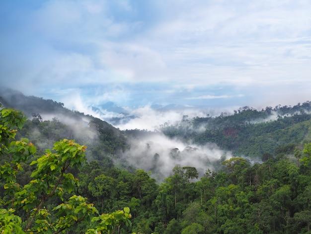 Brouillard et nuages au-dessus des montagnes en saison des pluies