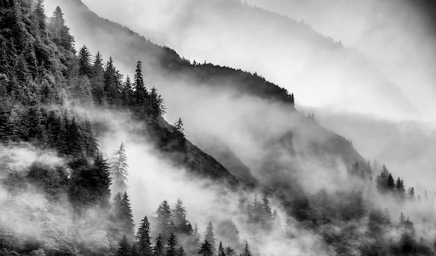 Brouillard sur le sommet de la montagne en alaska en noir et blanc